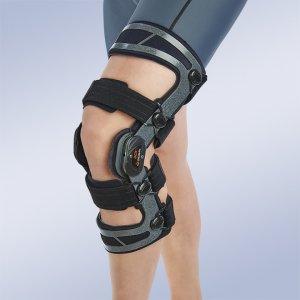 Lesiones de ligamentos. Lesiones meniscales